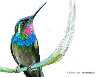 Brazilian Ruby Hummingbird Print, Wildlife Illustration, Cute Bird Drawing, Nursery Art  HB1