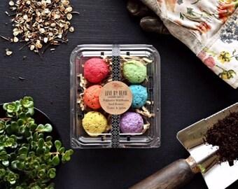 Milkweed Rainbow Seed Bomb-Mothers Day-Hostess Gift-Gift Under 20-Green Thumb