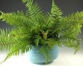 Ceramic Flower Pot, Pottery Planter, Ceramic Pot, Handmade Pottery, Green Planter, Windowsill Gardening, Blue Flower Pot, Home Decor,  FP5