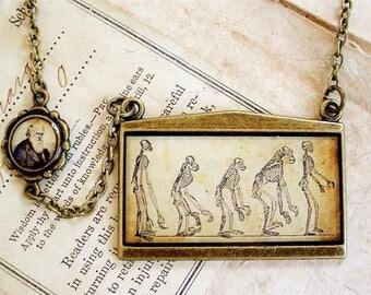 Darwin Necklace - Evolution - Charles Darwin Jewelry in Bronze or Silver