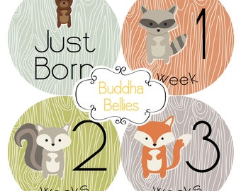Forest Animals / 16 STICKERS /Woodland Baby Monthly Stickers / Birch Fox Deer Bear Baby Month Stickers Hunter Baby Milestone Forest Friends