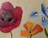 Poppis and Iris Original Oil Painting
