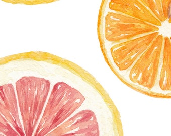 Grapefruit & Orange / Watercolor Illustration / Food Illustration / Art Print / Giclée Print / Wall Art / Home Decor