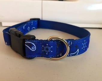 Blue Paisley Dog Collar handmade