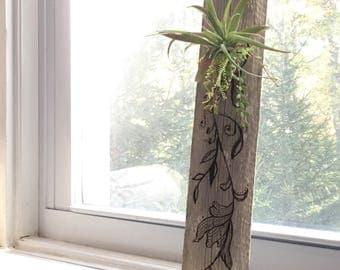 Wood burned airplant holder