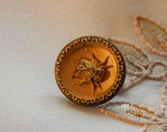 Fly -  Molded Brass Button