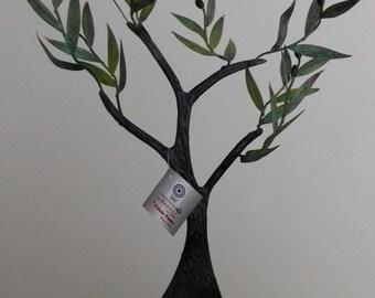 Bronze olive tree