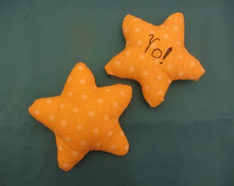 Wishing Star Pillow