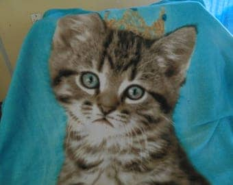 a special kitty fleece blanket