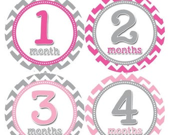 Monthly Baby Stickers Baby Month Stickers Baby Girl Month Stickers Monthly Photo Stickers Monthly Milestone Stickers 353