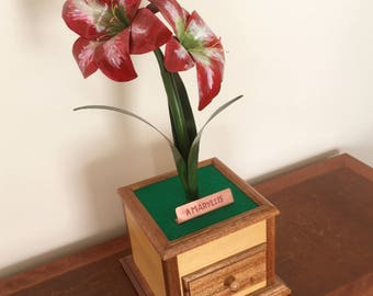 Jewelry Box with Amaryllis