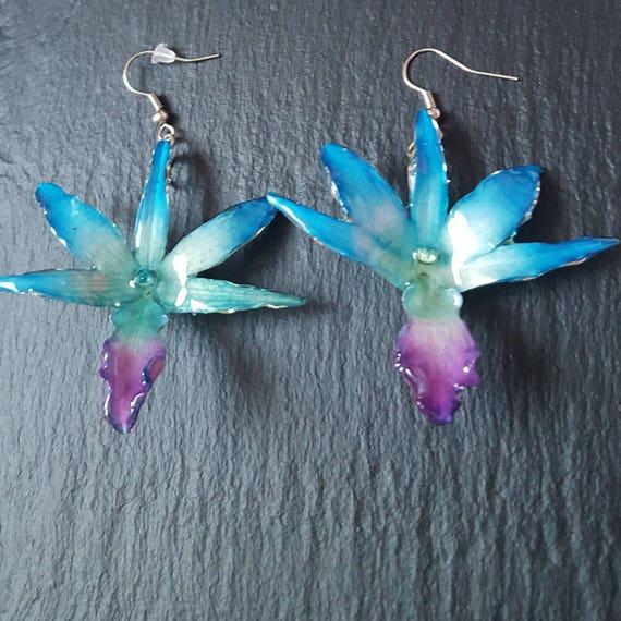 real orchid Draconis flower earrings in blue