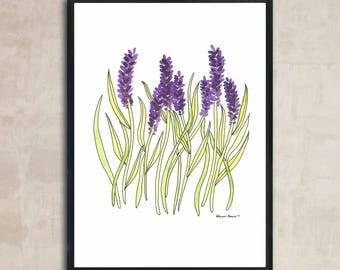 PRINT Lavender Illustration