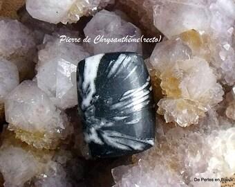 RARE - 19x25x4.5mm black and white Chrysanthemum stone