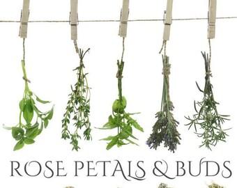 Dried Rose Petals & Buds, Rosa Damascena, Food Grade Organic Rose Petals, Cake Decor, Herbal Tea Blend, Bath Bombs, BeesBotanics Rose Petals