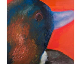 Limited Edition FRAMED PRINT of DUCK in orange and blue from original oil painting