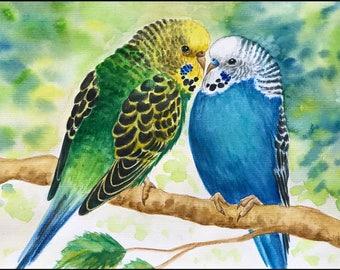 Original Watercolour Painting Budgerigars Budgies Birds Parakeets