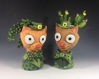Leprechaun Cats // St. Patrick's Day // Succulent Planter