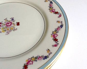 Jackson Featherweight Dinner Plates, Set of 4, White Dinner Plates with a Floral Design, Blue & Gold Rim