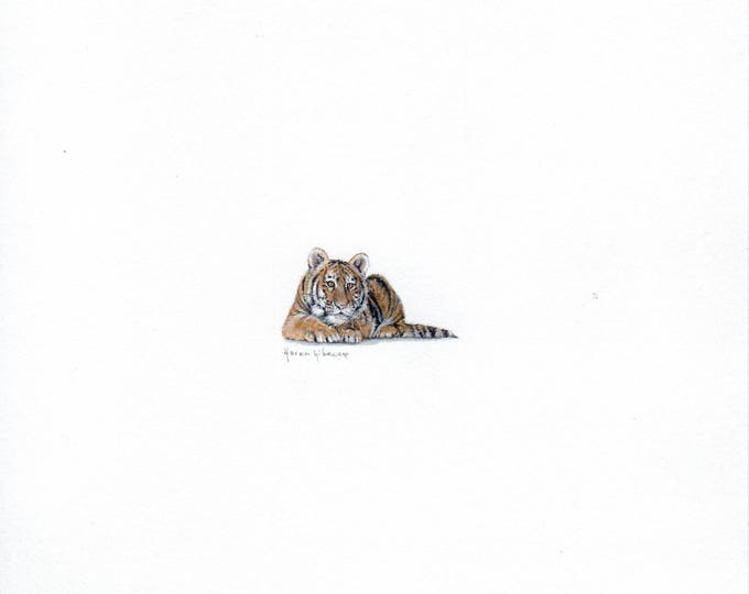 "Print of miniature painting of a Tiger. 1 1/4"" x 1 1/4"" print of original a Tiger painting on 5"" square german etching paper"