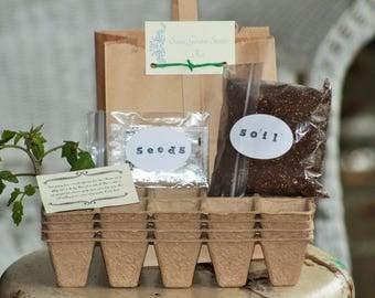 Salsa Garden Starter Kit, Garden Kits, Vegetable Garden Kits, Growing Kits, Garden Gifts