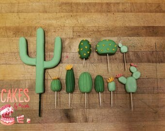 10 Piece Cactus Fondant Cake Topper Kit (MADE TO ORDER)