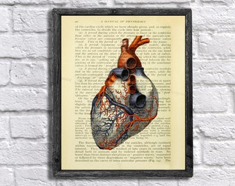 Heart Physiology Art - Human Heart Drawing Vintage Physiology Textbook Page Collage Art - Medical Decor