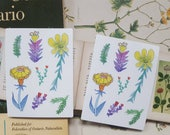 Imaginary Flowers Sticker Sheet / floral / garden / plant magic / laptop stickers / aesthetic