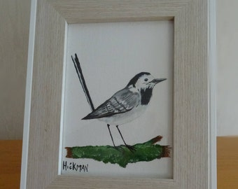 Hand painted Wild bird collection - The Pied Wagtail