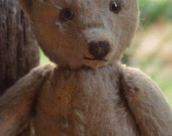 Adorable 1950s Steiff Teddy Bear with Cute Face, Steiff Button, Teddy Bear, Mohair, German