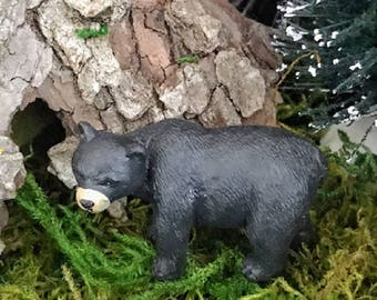 Miniature Black Bear