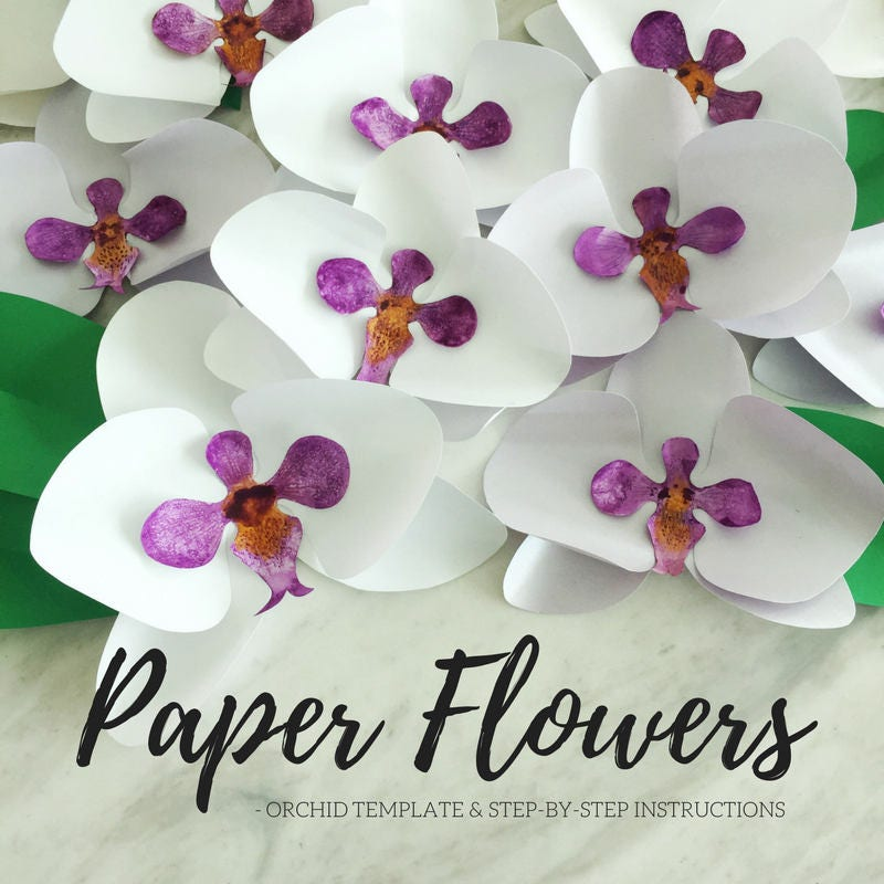 paper flower template paper orchid template flower