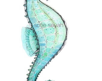 Seahorse - Sofie Seyah Illustration - Turquoise Water Colour and Ink - Greeting Card - Nursery Art