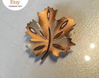 Vintage Coro Gold Tone Maple Leaf Brooch