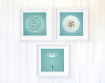 Dandelion wall art, duck egg blue dandelion seeds wall art, duck egg decor, nursery decor ideas, set of three large prints bedroom decor