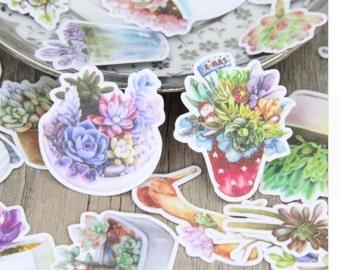 Succulent Plant Scrapbooking Stickers