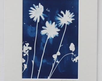 Botanical alternative photograph, unframed original