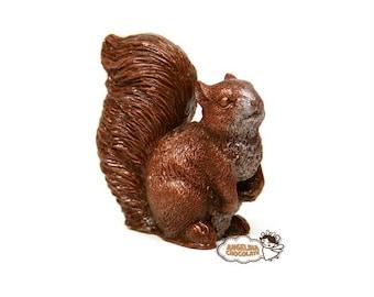 chocolate squirrel figurine squirrel gift thanks you gift chocolate 3D edible kids gift chocolate animals party chocolate woodland gift