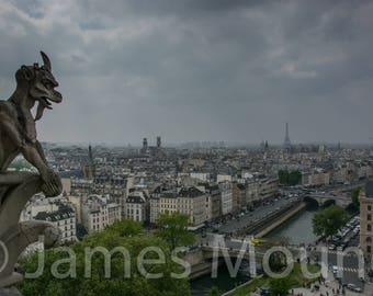 Photograph: Gargoyle on Notre Dame Cathedral, looking over the Seine, Paris
