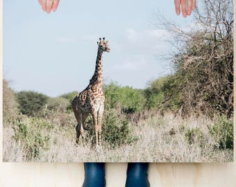 Wall art// Giraffe // Large photo print // Bedroom decoration