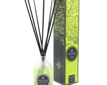 Lime Fragrance Diffuser
