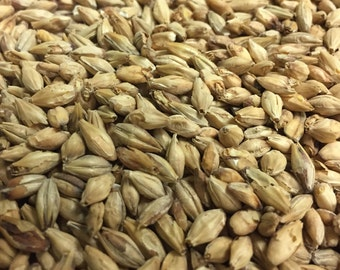 15 lbs Munich 2-row Bohemian Malt for Brewing Beer All Natural Barley Homebrew Grain