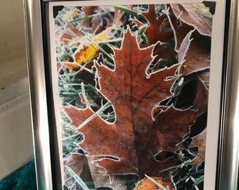 8x10 framed photo