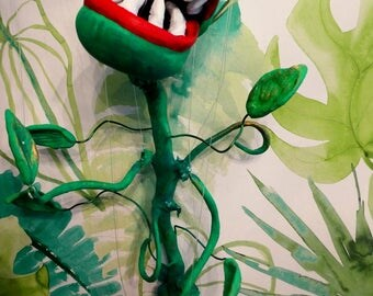 Puppet Carnivorous Plant