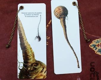 Botanical bookmarks parsnip-botanical Parsnip Bookmark-watercolor-Illustration-gift-cookbook-Charm-Forgotten vegetable