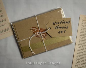 Handmade Blank Greeting Card Set (4-Bar) - Woodland Shrub - Golden Guide to BIRDS
