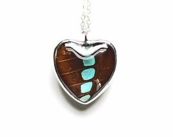 Real Butterfly Heart Necklace. Graphium Sarpedon Butterfly Pendant. Heart Pendant. Heart Necklace. Sweetheart Jewelry.
