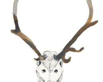 Watercolour Painting Animal Skull, Archival Art Print, Bone Head with Antlers, Standing Tall In The Spirit World, Natural Hunter Organic