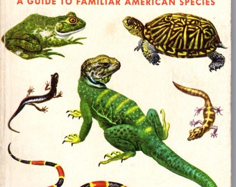 Reptiles and Amphibians Guide 1950's Golden Nature Guide Familiar Over 200 American Species in Full Color