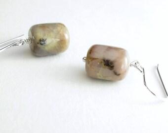 Genuine Coprolite Earrings, Fossilized Dinosaur Poop Jewelry